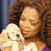Oprah joins Twitter